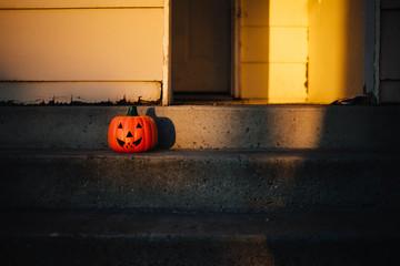 Pumpkin In Sun
