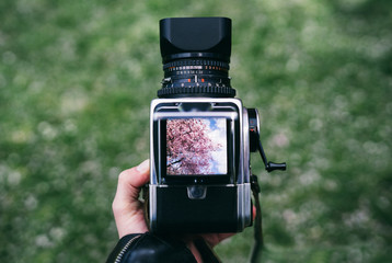 Watching through the viewfinder of a Medium Format Camera
