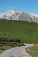 Road through the Picos de Europa
