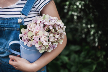 Carrying a hydrangea