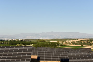 Field of solar panels, Andalusia, Spain