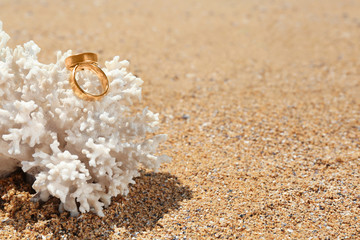 Golden rings on coral at seaside. Wedding on beach concept