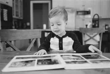 Cute young boy looking through a picture book