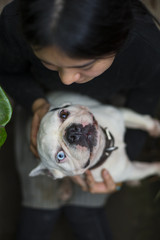 One Young Asian Woman Holding her Dog Bulldog