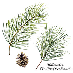 Watercolor Christmas tree branch set. Hand painted Christmas fir branch with cone isolated on white background. Botanical illustration. Holiday print for design.