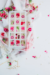 Flowery Ice Cubes