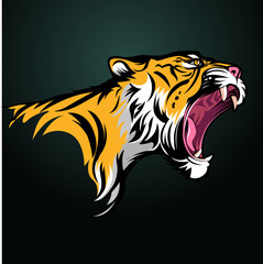 Vector illustration, Tiger fierce with open mouth