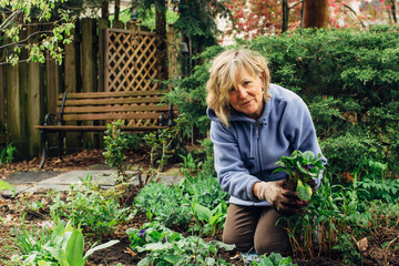 Smiling middle age woman gardening