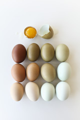 Colourful Assortment of Eggs