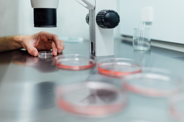 Working in a Professional Laboratory