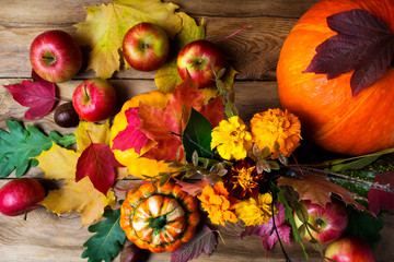Marigold flowers, apples, pumpkins and fall leaves, top view