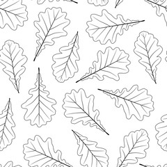 Hand drawn oak leaves isolated on white background