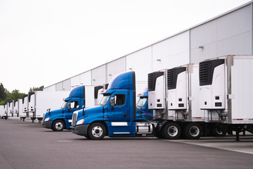 Blue semi trucks and semi trailers stand in row hardly near the warehouse gate under loading and unloading process Wall mural