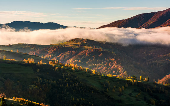 cloud rising above the rolling hills, gorgeous autumnal scenery in mountains at sunrise