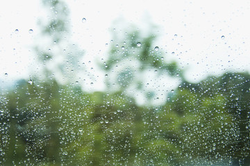 rain drop on window glass with forest blur tree background.