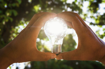 two hand holding light bulb and sunset pass through big tree in nature, solar energy concept