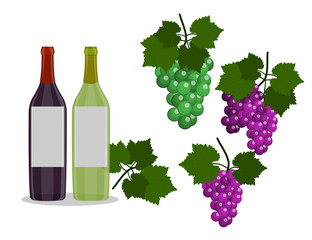 Set of Wine bottles and grapes isolated in the white background. Flat Design Illustration