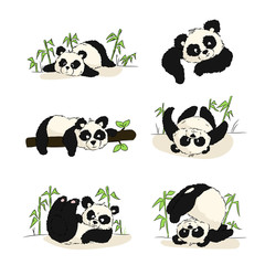 A set of illustrations with a panda cub. Panda sleeping, eating, playing. Hand drawing.
