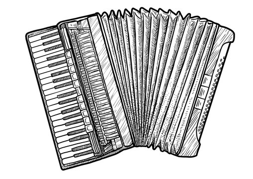 Accordion illustration, drawing, engraving, ink, line art, vector