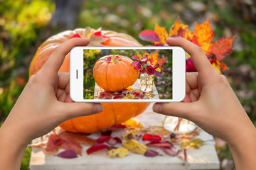 Woman take photo of pumpkin and autumn bouquet by phone