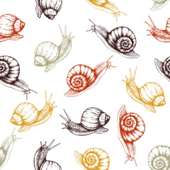Seamless pattern with hand drawn snails sketch. Vector autumn background. Vintage illustration.