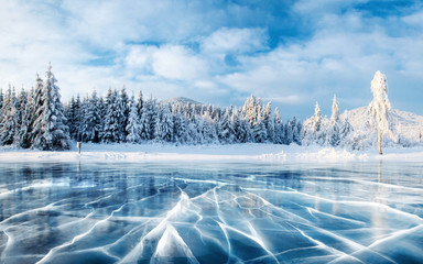 Blue ice and cracks on the surface of the ice. Frozen lake under a blue sky in the winter. The hills of pines. Winter. Carpathian, Ukraine, Europe. Fotoväggar