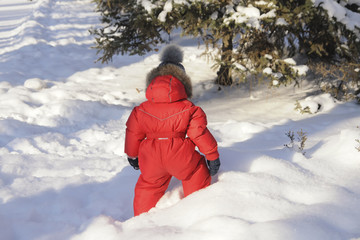 Portrait of a child in winter clothes, a walk through a winter park,
