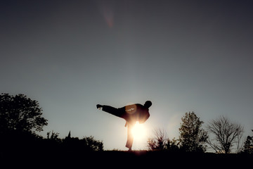 Martial Artists Silhouette - Side Kick
