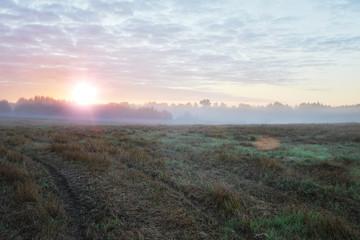 Sunrise in fields