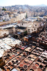 Workers at the tannery in Fes, Morocco