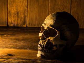 The skull is placed on a wooden desk. Candle from side and wooden background