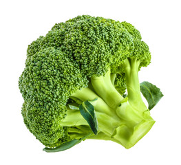 Fresh broccoli isolated on white without shadow