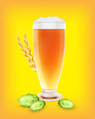 Beer glass with hop plant and wheat