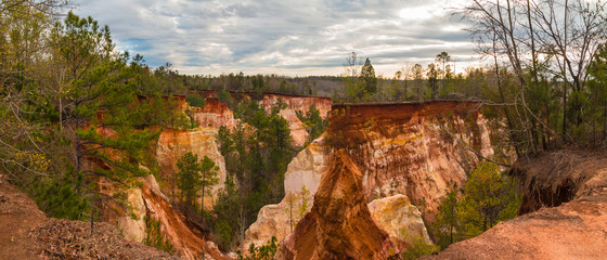 Staande foto Canyon Panoramic aerial view of canyons and thicket in the Providence Canyon State Park in cloudy autumn day, Georgia, USA
