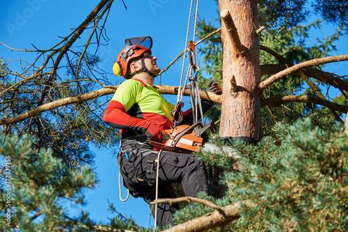 Klettergurt Baumklettern : Baumkletterer mit säge und klettergurt holzfäller bei der arbeit