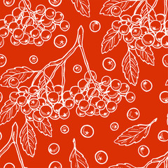 Pretty sketched seamless pattern made of hand drawn rowan.