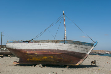 A dog next to an old boat beached on the sand