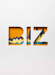 Biz concept with words and graphs