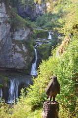 cascade de Billaude