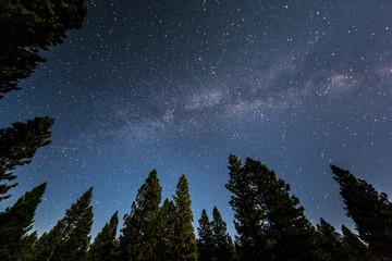 PNW Night Sky