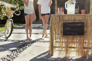 Two Young Girls At Homemade Lemonade Stand