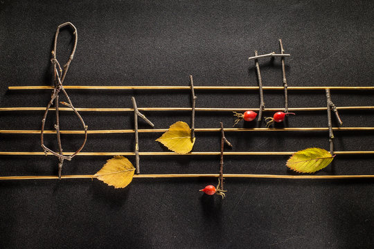 Musical notes conception. Wooden musical notes and leaves.