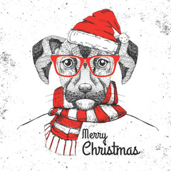 Christmas Hipster fashion animal dog dressed  a New Year hat and scarf