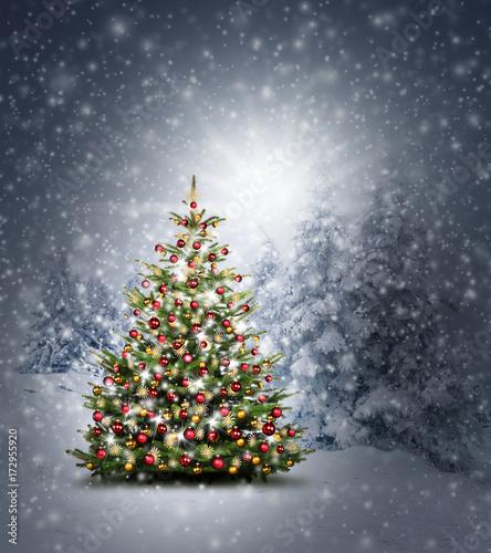 weihnachtsbaum im wald stockfotos und lizenzfreie bilder. Black Bedroom Furniture Sets. Home Design Ideas