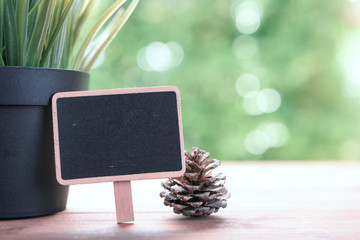 Blackboard,pine cone and flower pot on wood table over green field background,copyspace for text