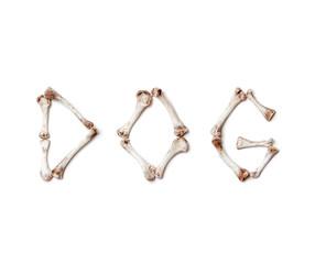 Word dog made up of chicken bones on white background