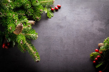 Background christmas decoration twig, red berries on back slate.