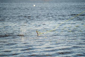 Image of ripple on sea surface