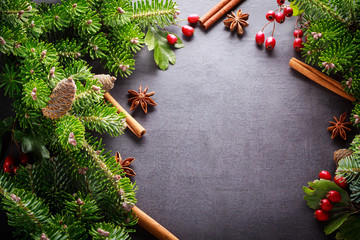 Background christmas decoration green twig, red berries, cinnamon and anise spices on back slate.