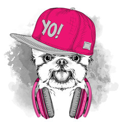 The poster with the image dog portrait in hip-hop hat adn with headphones. Vector illustration.